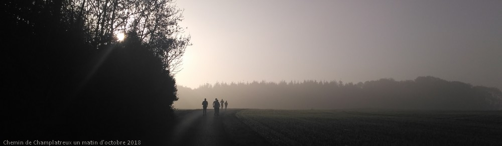 Runers in the morning 3